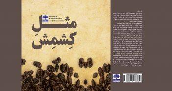 کتاب-مثل-کشمش-مجید-محمدی-فر-انتشارات-عطران-رمان